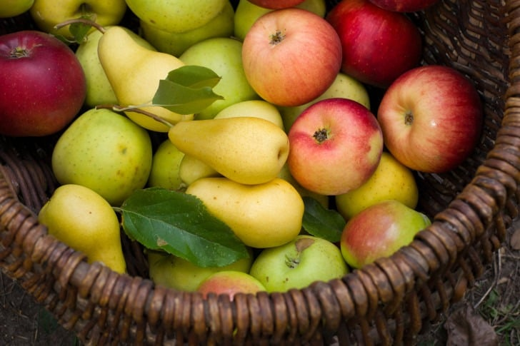 سیب و گلابی در میان وعده سالم
